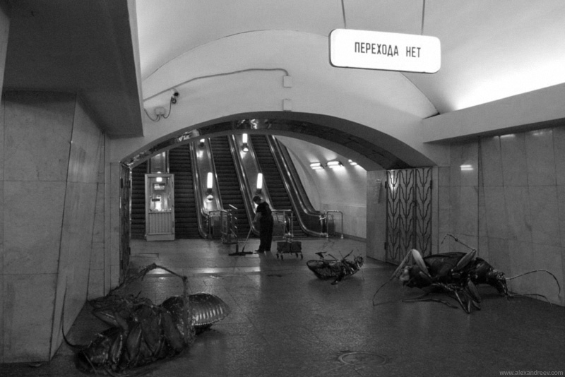 1_insectos_horror_metro_moscu