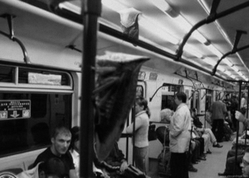 1_metro_mosuc_insectos