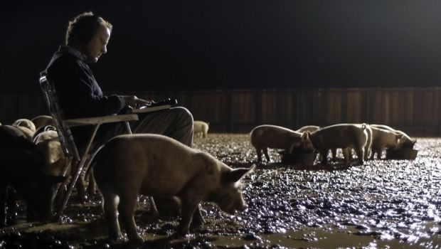 1upstream-color-pigs-the-sampler-620x