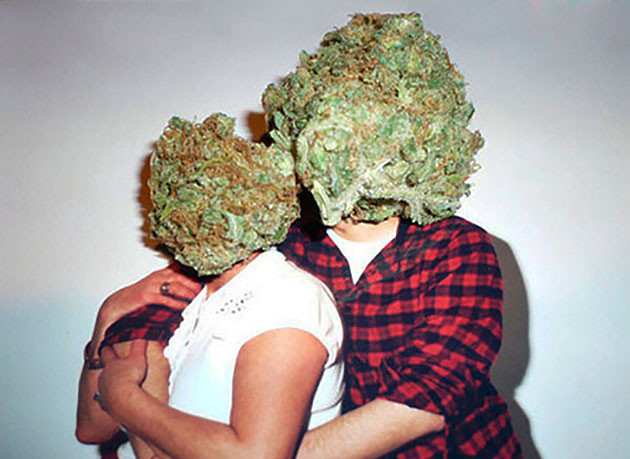 elite-daily-marijuana-couple