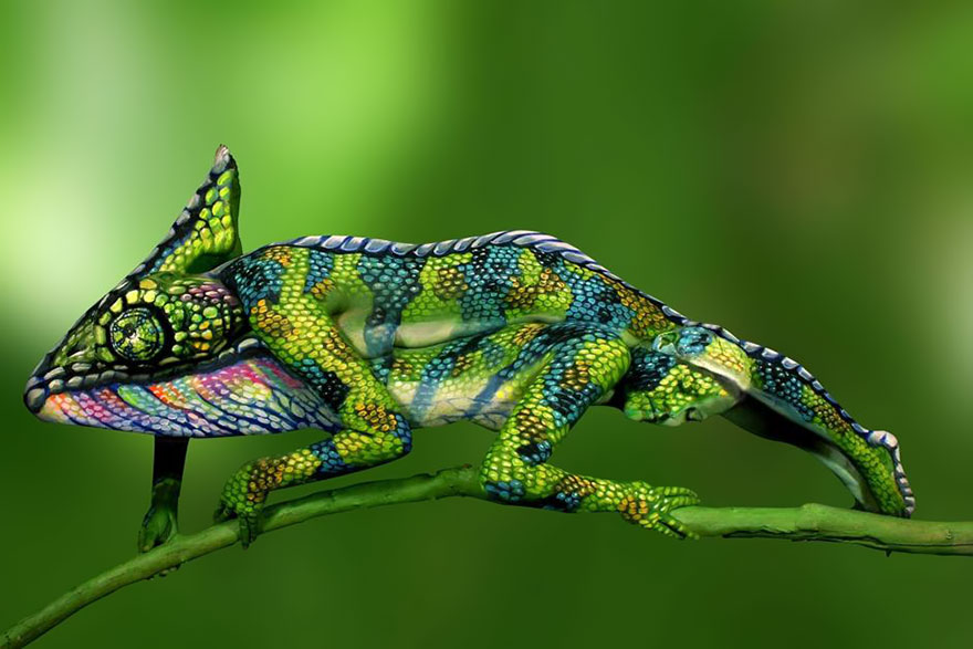 chameleon-body-painting-optical-illusion-johannes-stotter