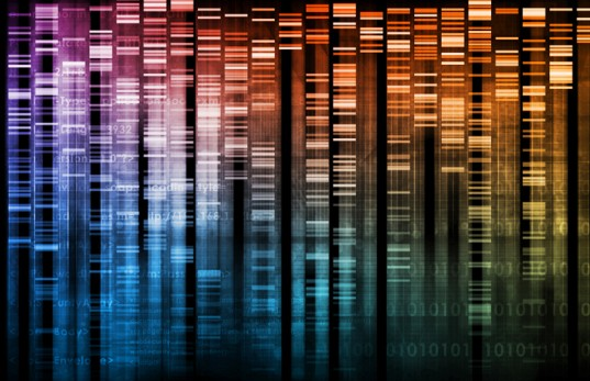 dna-data-library-537x347