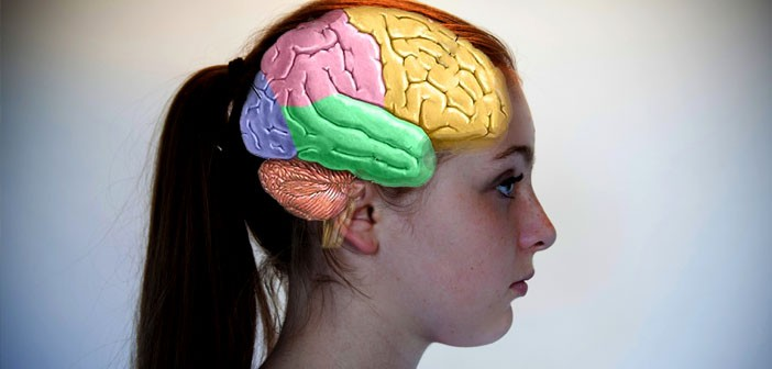 Brain-photo-by-AmenClinic-dot-com-Creative-Commons-702x336