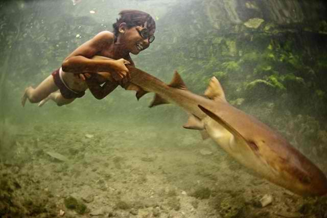 bajau_laut_pet_shark-640x426